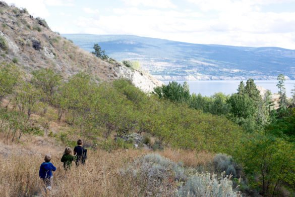 summerland-centennial-trail-4-of-11